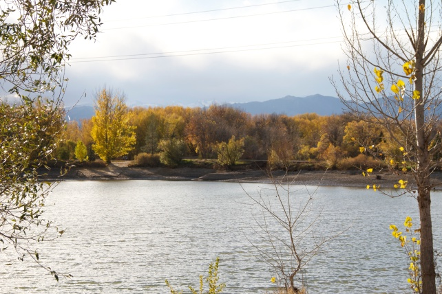 Golden Ponds, the western terminus of the St. Vrain Greenway Trail.